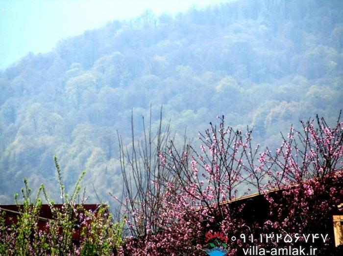 img 9716 - جوربند روستای سر سبز و توریستی