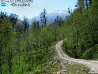 6605411292919218 200x150 - روستای لاویج