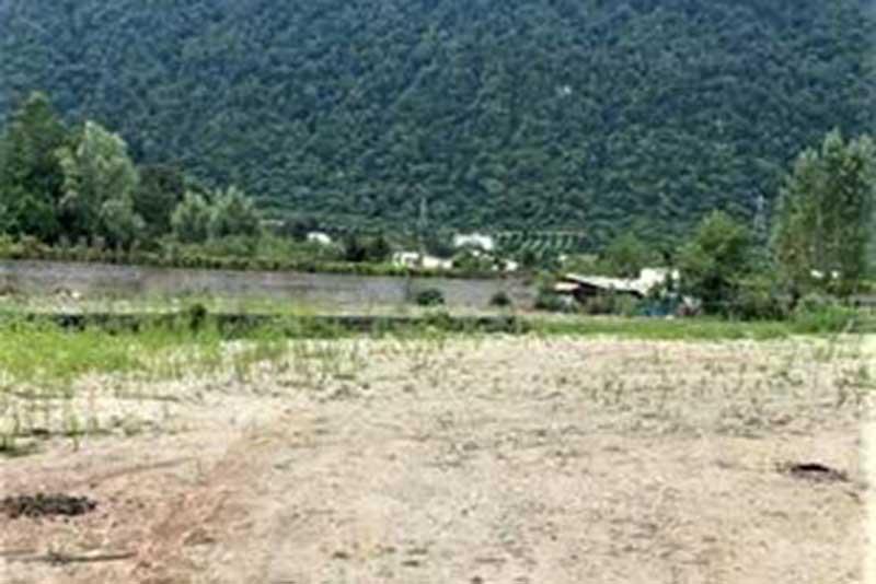 خرید زمین جنگلی هکتاری نوشهر